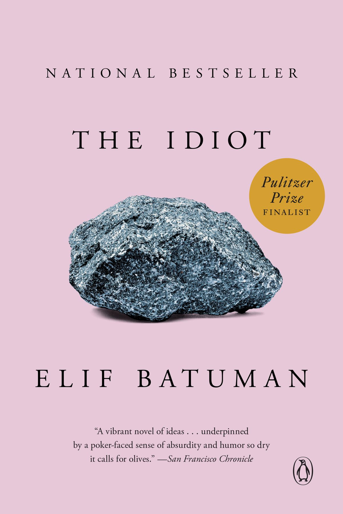 Elif Batuman - The Idiot