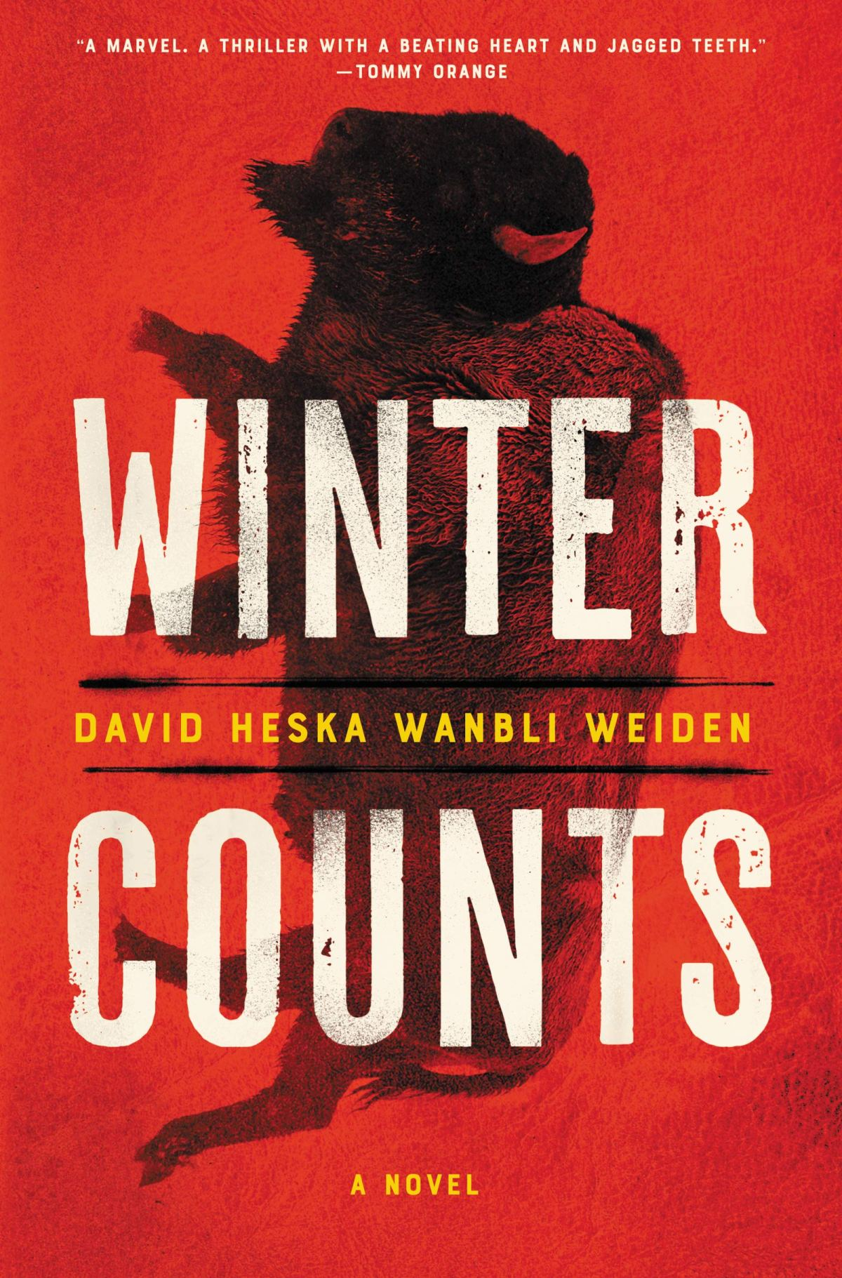 David Heska Wanbli Weiden - Winter Counts